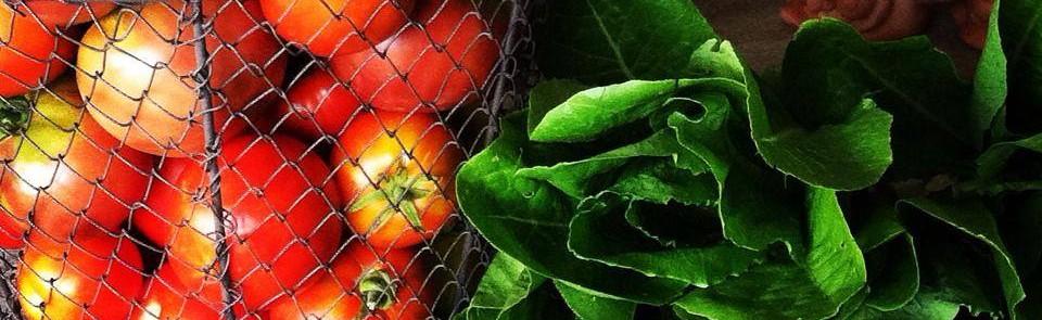 Produce & Greenhouses